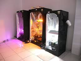 kit chambre de culture led growshop papeete 98713 magasin hydroponique papeete culture