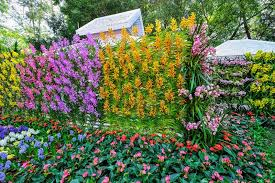 55 best vertical garden ideas planters u0026 diy kits designing idea