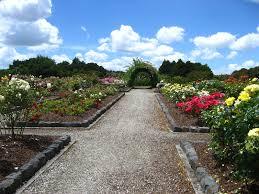 New Zealand Botanical Gardens Botanic Gardens Manukau Island New Zealand 037