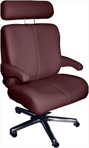Living Room Chairs For Bad Backs Living Room Chairs For Bad Backs Several Options For Living Room
