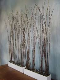 lighted birch tree forest tree forest birch and lights
