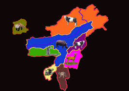 India State Map by Come And See Northeast India Map With Their State Bird And State