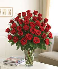 Long Stem Rose Premium 3 Dozen Long Stem Red Roses At From You Flowers