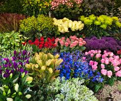 wholesale flowers wholesale florist