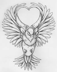 the 25 best dove sketches ideas on pinterest cameron canada
