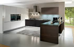 european kitchen design nano at home