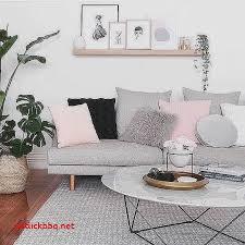 deco avec canapé gris coussin pour salon en rotin pour decoration cuisine moderne