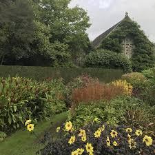victorian garden walls victorian plant fashion at lanhydrock cornwall jack wallington