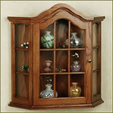 Glass Door Cabinet Kitchen Amusing Kitchen Wall Mounted Curio Cabinet Come With Red Wooden