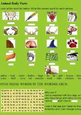 english worksheets body parts worksheets page 2