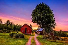 sunset trees road home landscape rustic farm house wallpaper