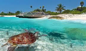 best mexican vacations atlantica press