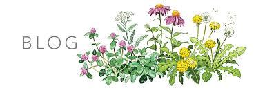 Benefits Of Urban Gardening - science update the benefits of gardening urban moonshine