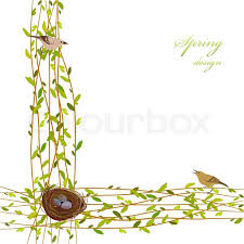background with willow tree branches nest birds and eggs