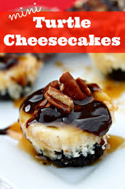 9 best mini cheesecakes images on pinterest mini cheesecakes