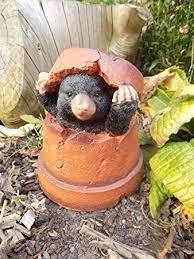 mole in flower pot garden ornament resin co uk garden