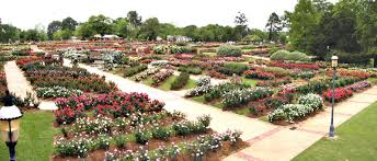 Landscaping Tyler Tx by Roses East Texas Gardening