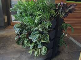 fall how to do a vertical garden about vertical gardens in how