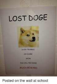Lost Doge Meme - lost doge such trubble so scare wow plz call 969 doge much reward