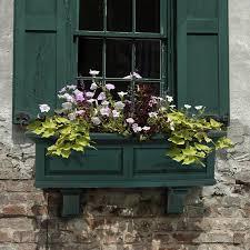 150 best window boxes images on pinterest window boxes windows