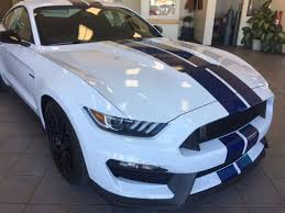 white mustang blue stripes 2017 ford mustang shelby gt350 coupe oxford white blue racing