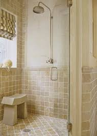 pretty small bathroom with big shower area for fresh look corner