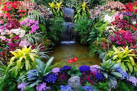Photo Flower Garden by Flower Show U2014 Fresno Home Shows