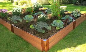 Ikea Raised Garden Bed by King Bed Frames Ikea Raised Garden Bed Plans For Teenage Bed