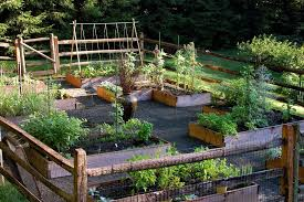 Edible Garden Ideas Geometric Garden Design Ideas Landscape Traditional With Kitchen