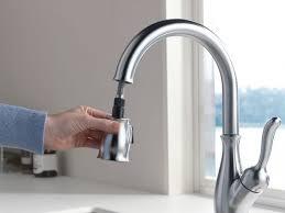faucet kitchen double sink taps blanco distributors moen faucets