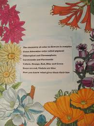 ncw 2015 illustrated poem contest winners american chemical society