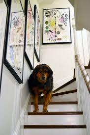 Hanging Artwork 198 Best Hanging Art Images On Pinterest Live Frames And