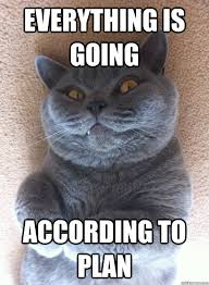 Evil Cat Meme - everything is going according to plan evil cat quickmeme