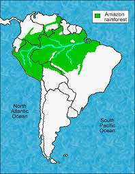 south america map rainforest endangeredspecies 4