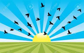 15 sun cliparts vector eps jpg png design trends premium