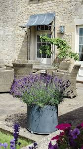 Raised Patio Planter by Best 25 Patio Planters Ideas On Pinterest Front Porch Flowers