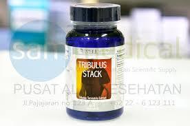 jual wellness tribulus stack vitalitas kekuatan pria 30 sam
