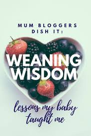 7 best blw clean up crew images on pinterest baby led weaning