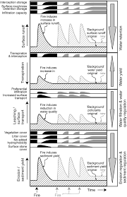 Definition Of Wildfire Intensity by Wildfires Ecosystem Services And Biodiversity In Tropical Dry