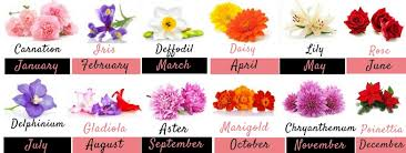 flowers of the month birth month flowers and their significance