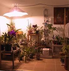 Hps Lights Grow Lights Homegrown Hydroponics