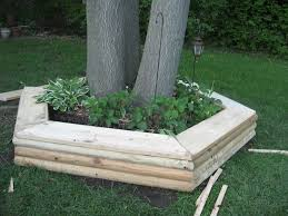 Landscape Timber Bench Tree Bench Designs That Literary Embrace Nature Tree Rings Lawn
