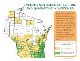 emerald ash borer map emerald ash borer locations in wisconsin wisconsin dnr
