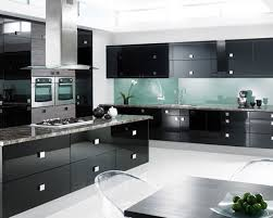 Black Kitchen Backsplash Kitchen Amusing Black High Gloss Wood Kitchen Cabinet With Green