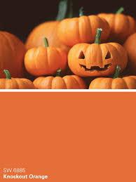sherwin williams paint color u2013 knockout orange sw 6885 autumn