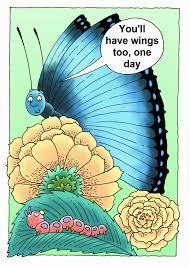 butterflies u2013 creation clues for kids vol 5 no 3 the creation