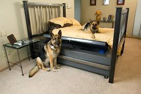 bedroom gun safe gun safe in bedroom installing gun safes the significance of a good
