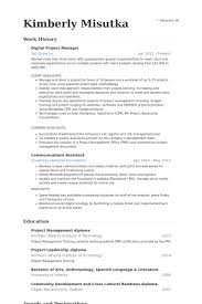 Best Project Management Resume by Digital Project Manager Resume The Best Resume