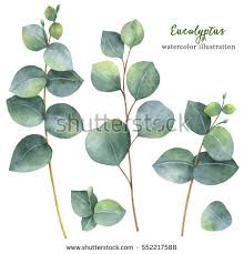 watercolor hand painted green floral banner stock illustration