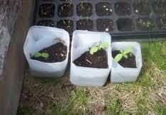 diy self watering garden planters